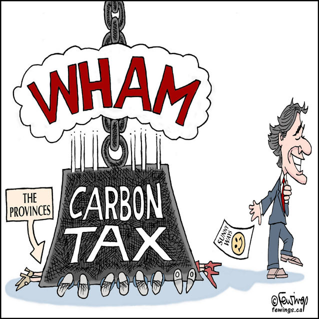 Image result for cartoon on carbon tax