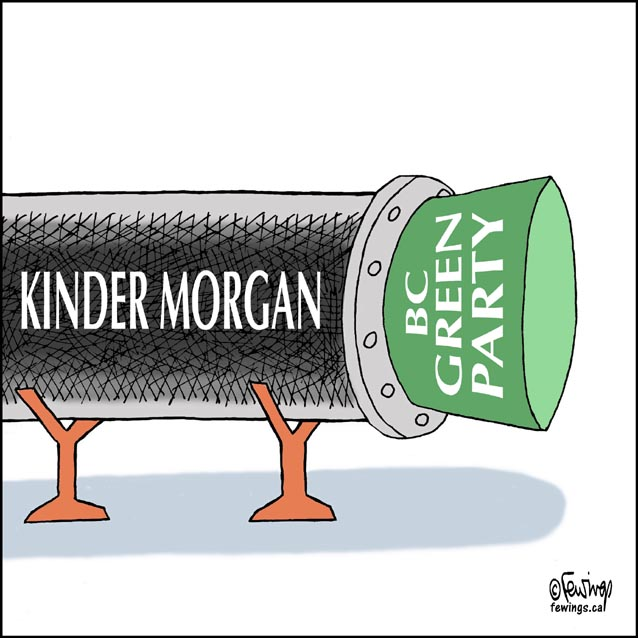 Kinder Morgan Pipeline Fewings Cartoons